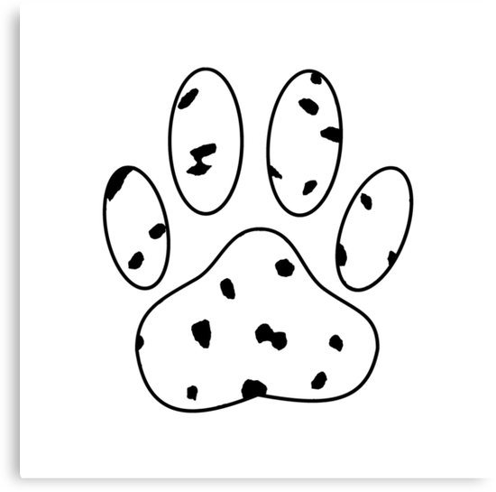 550x545 Dalmatian Puppy Paw Print Canvas Prints By Almdrs Redbubble