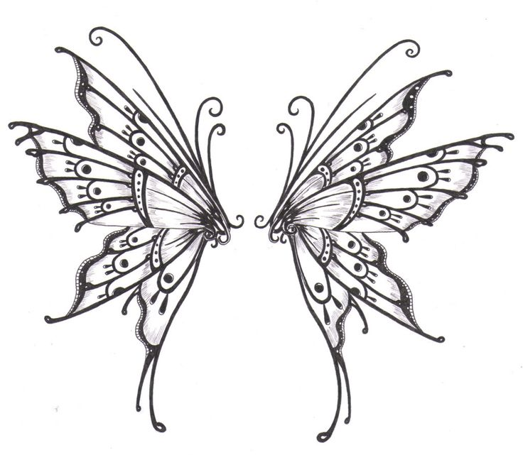 Purple Butterfly Drawing