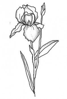 236x346 Iris Flower Tattoo