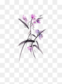 260x347 Orchid Background, Phalaenopsis, Orchid, Purple Background Image