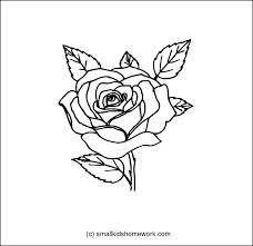 228x221 Outline Flowers Pictures