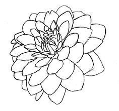 236x221 Line Drawing Of A Flower Free Download Clip Art Free Clip Art