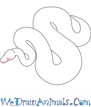 300x350 How To Draw A Python