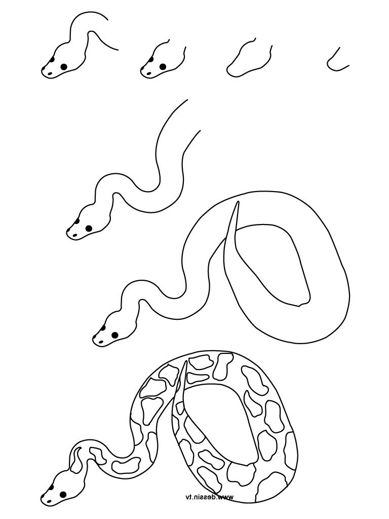 768x1024 Snake Drawings Step By Step