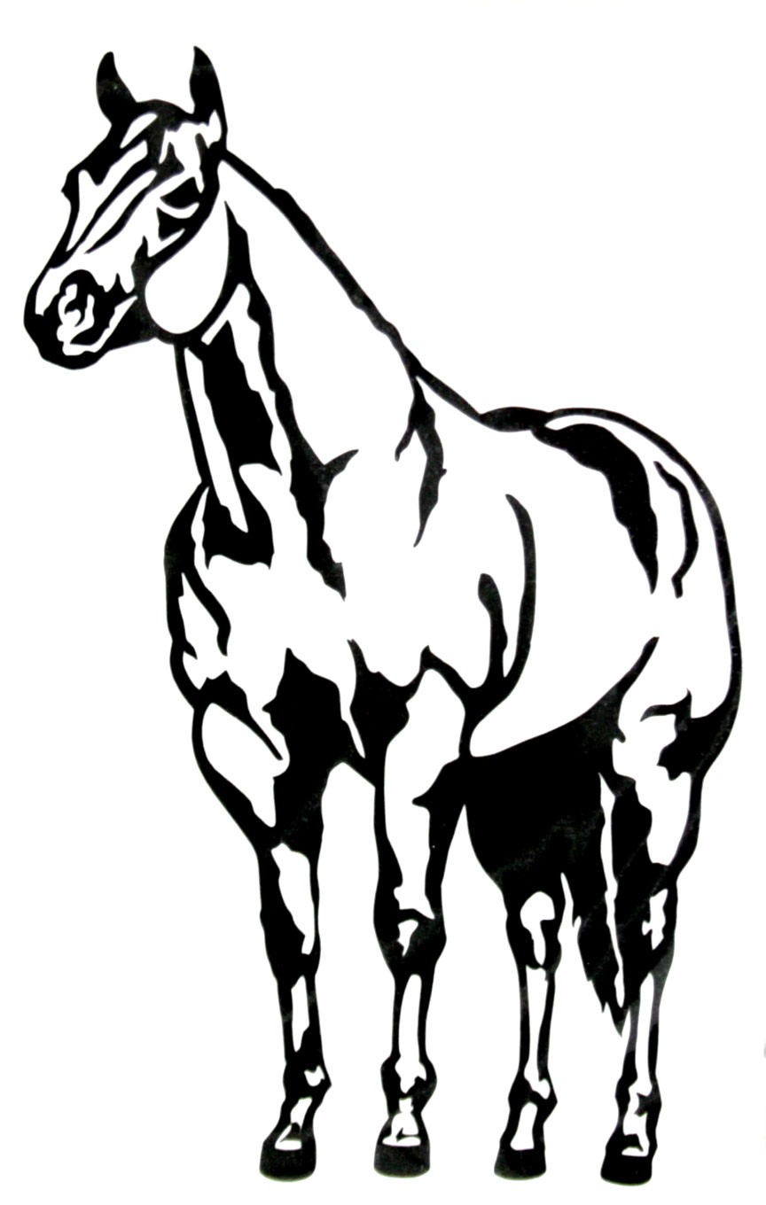 Quarter Horse Drawing at GetDrawings.com | Free for personal use ...