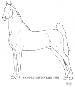 254x300 American Quarter Horse For Coloring Page