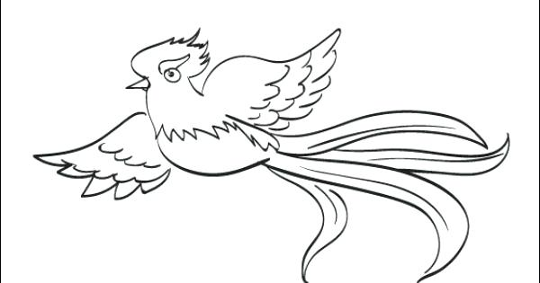 600x315 Quetzal Coloring Page Coloring Page Coloring Page To Print Out