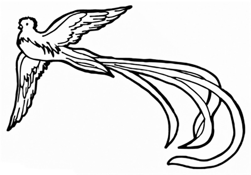 800x559 Simple Rendition Of A Quetzal. Tattoo Love Tattoo