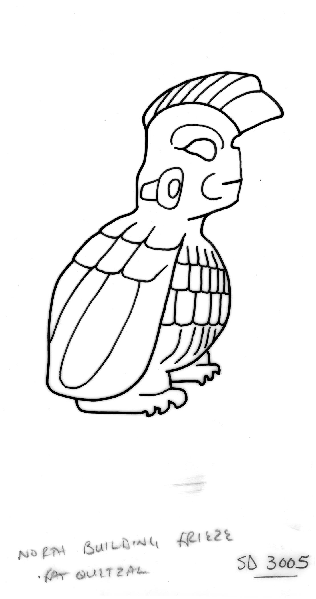 Quetzal Drawing