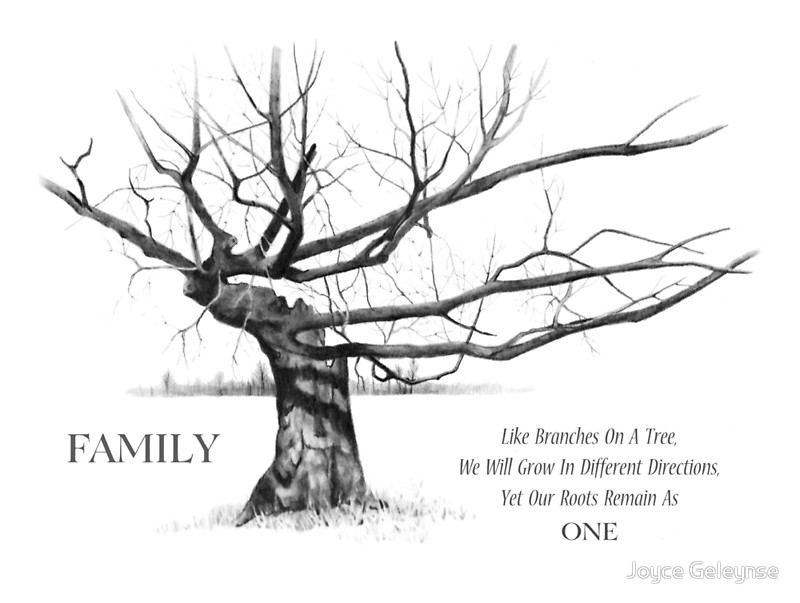 800x603 Family Quote, With Gnarly Tree In Pencil Drawing Greeting Cards
