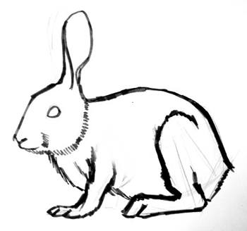 350x328 How To Draw A Rabbit