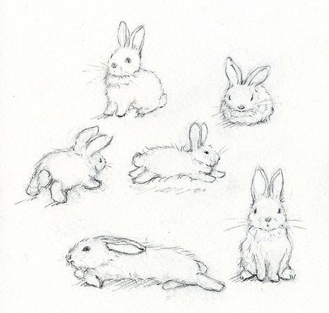 474x451 Adorable Art Learn How To Paint A Beautiful Bunny Rabbit