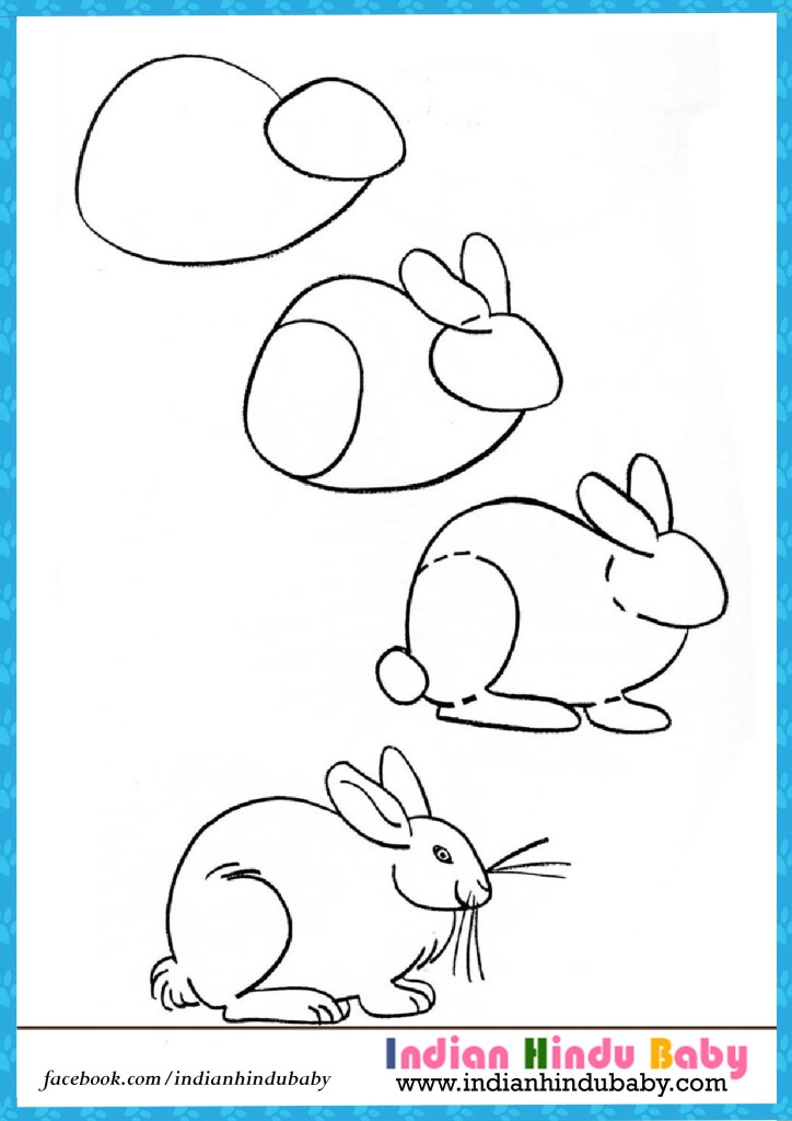 724x1024 Rabbit Drawing Step By Step Rabbit Step Step Drawing For Kids