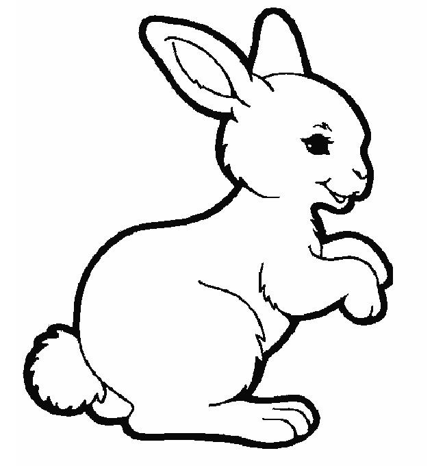 650x680 Rabbit Template