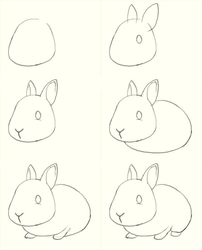 700x865 how to draw a bunny step by step how to draw how to draw a