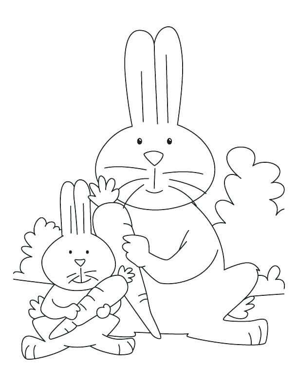 612x792 Peter Rabbit Coloring Book Also 26