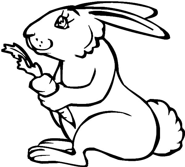 600x540 Rabbit Holding Carrot Coloring Pages Best Place To Color