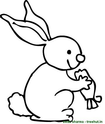 360x425 Rabbit Eating Carrot Coloring Sheet Coloring Pages