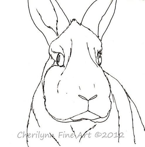 495x500 Portrait Of A Bunny Rabbit Pen