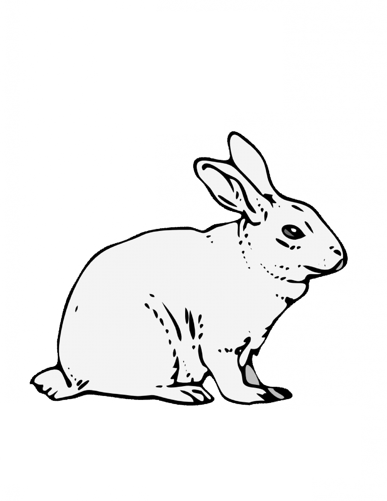 1582x2048 Rabbit Coloring Pages