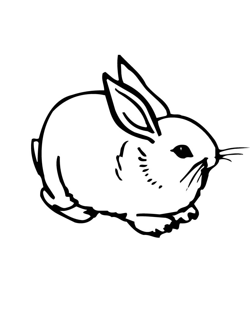 Rabbit Outline Drawing at GetDrawings | Free download