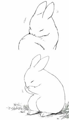 236x412 Bunny Outline Drawing Drawing Outlines, Bunny