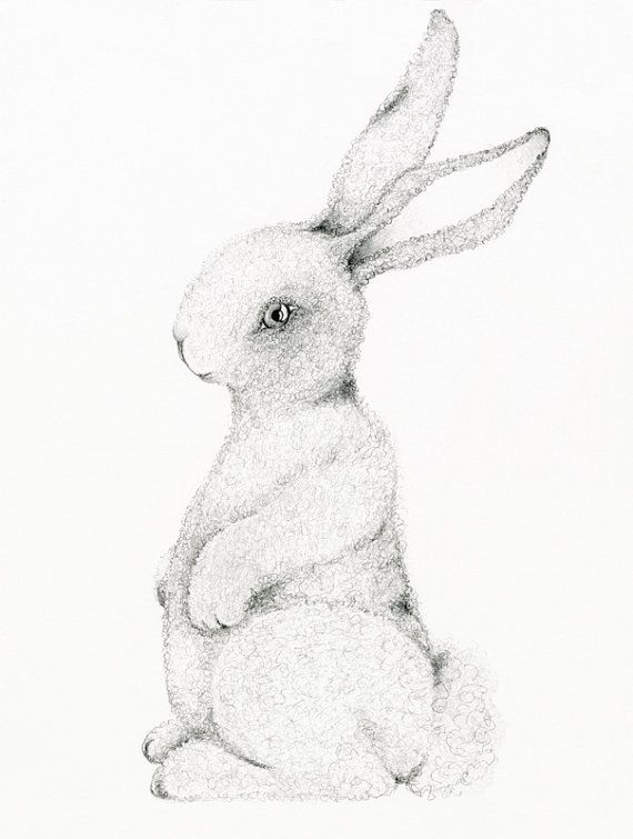 570x755 Fine Art Print Of The Original Pencil Drawing By Abitofwhimsyart