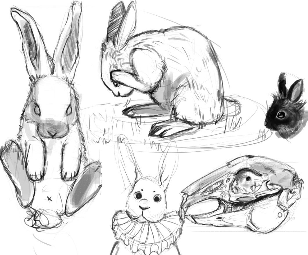1061x878 Andreea On Twitter Some Old Bunny Sketches D