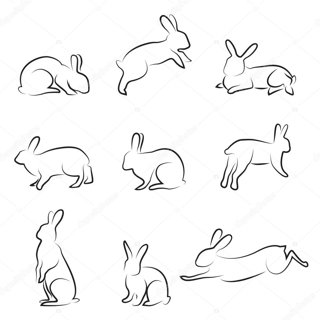 1024x1024 Rabbit Drawing Stock Vector Bogalo