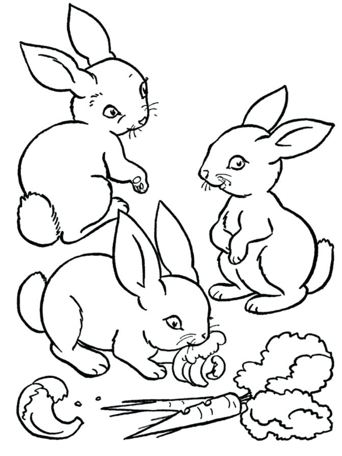 671x895 Coloring Pages Of Bunnies Medium Size Of Rabbits Coloring Pages