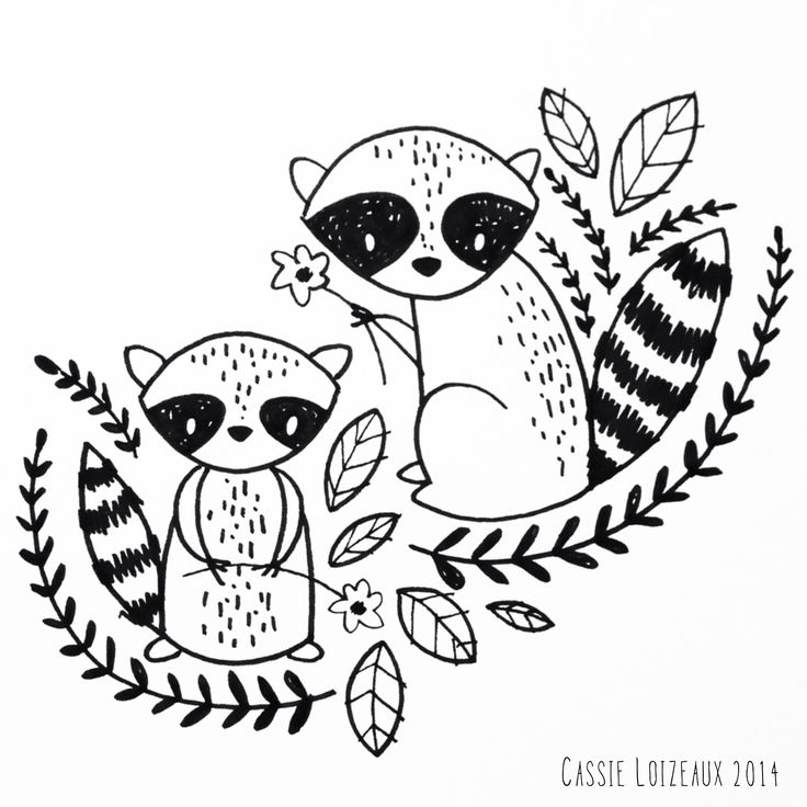 Raccoon Cartoon Drawing