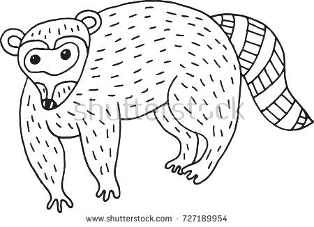 450x326 Coloring Pages Raccoons Drawn Easy Printable Coloring Pages