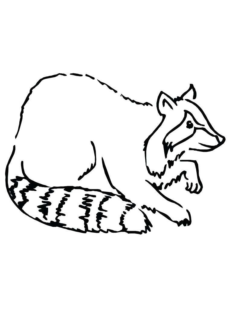 768x1024 Coloring Raccoon Coloring Page Pages Free. Raccoon Coloring Page