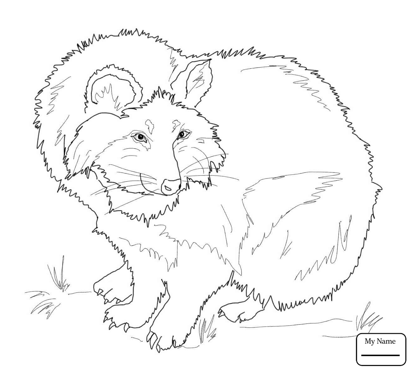 1316x1186 Raccoon Dog Raccoon Dog Tanuki Mammals Coloring Pages For Kids