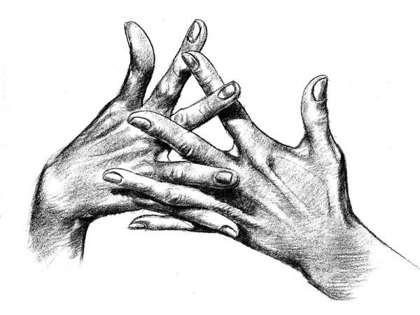 600x450 Hands Lady Fingers. Drawing Black White