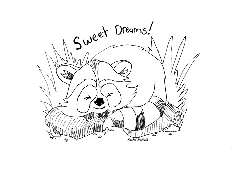 468x340 Rachel Maybeth Sleeping Baby Raccoon Free Coloring Page