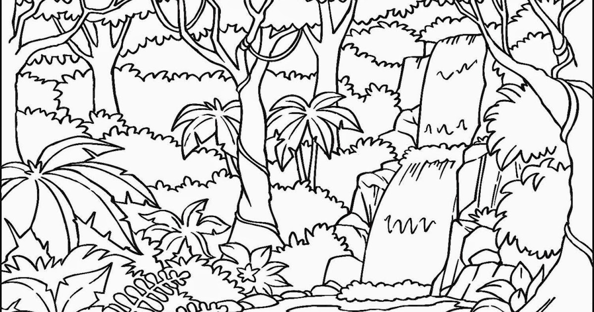 1200x630 Free Printable Tropical Rainforest Coloring Pages Page