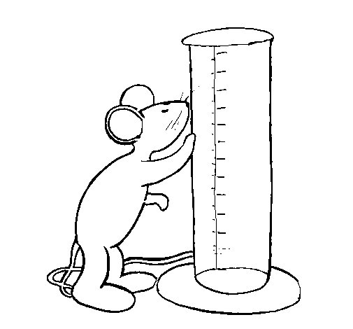 505x470 Mouse And Test Tube Coloring Page