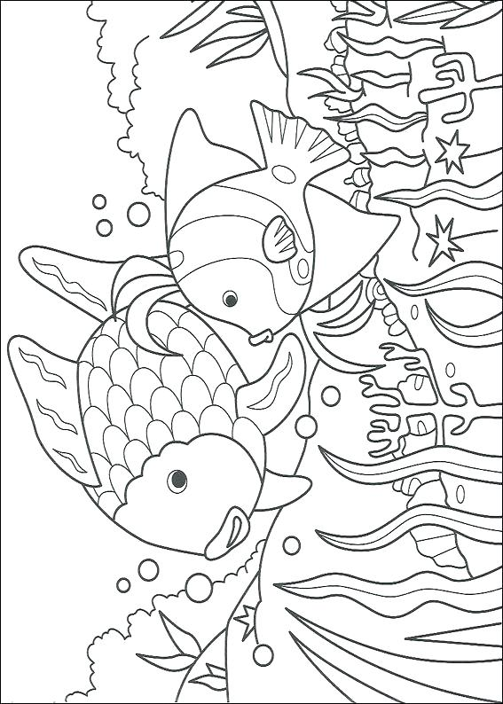 567x794 Coloring Page Of A Rainbow Rainbow Coloring Rainbow Coloring Page