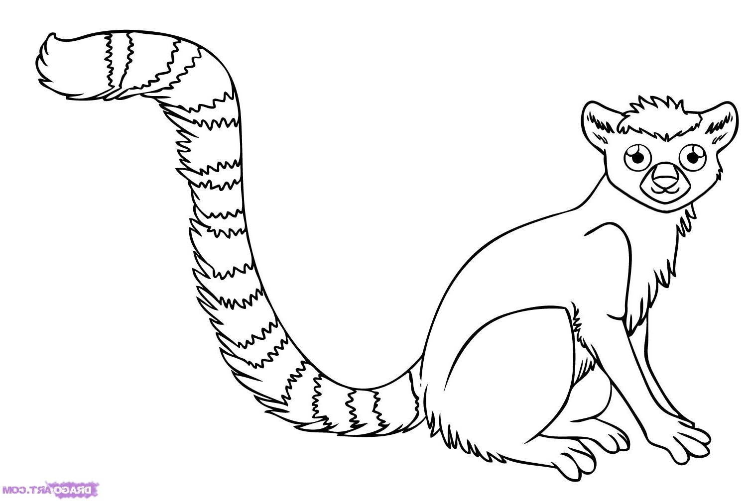 Rainforest Animal Drawing at GetDrawings.com | Free for ...