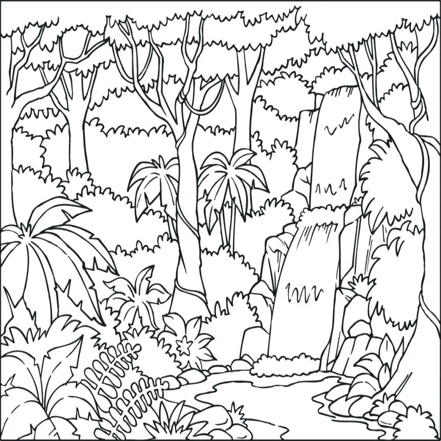 863x863 Tropical Rainforest Coloring Pages Coloring Pages Tropical