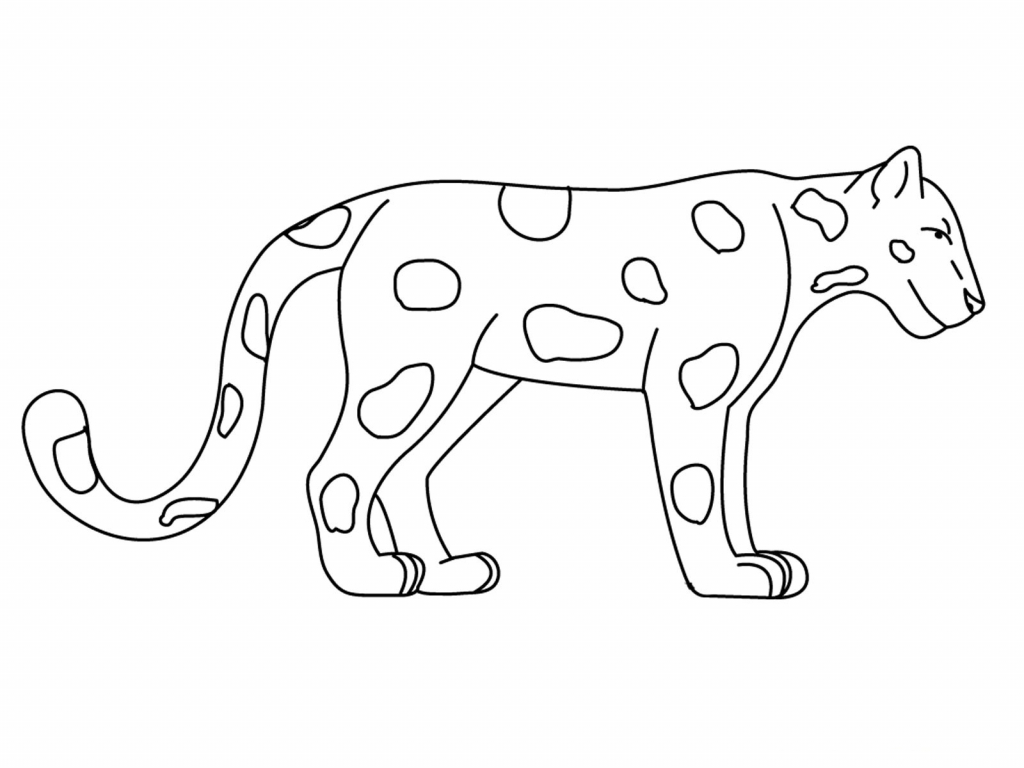 1024x768 Easy To Draw Jungle Animals Rainforest Animals Coloring Pages