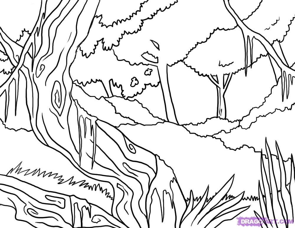 1000x774 How To Draw A Jungle, Step By Step, Landscapes, Landmarks Amp Places
