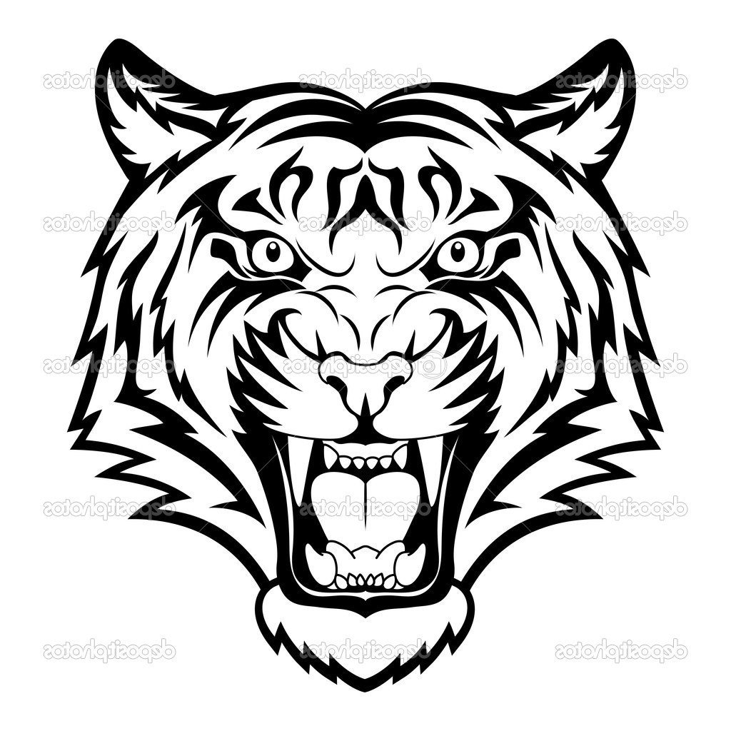 1024x1024 Draw Tiger Face How To Draw A Roaring Tiger, Stepstep, Rainforest