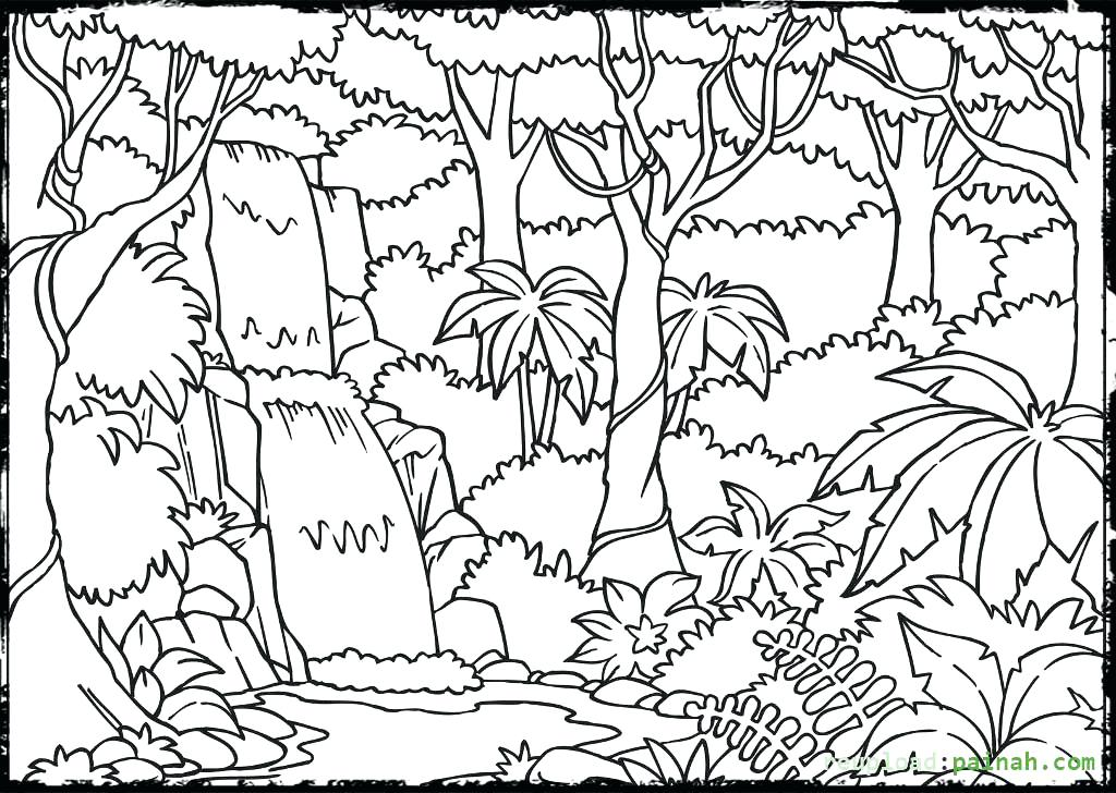 1024x728 Rainforest Coloring Sheets Forest Scene Coloring Pages Forest