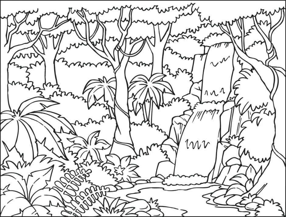 940x715 Rainforest Coloring Pages Perfect Coloring Pages Rainforest