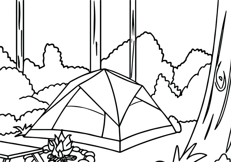 805x564 Rainforest Trees Coloring Pages Oak Tree In The Forest Page Color