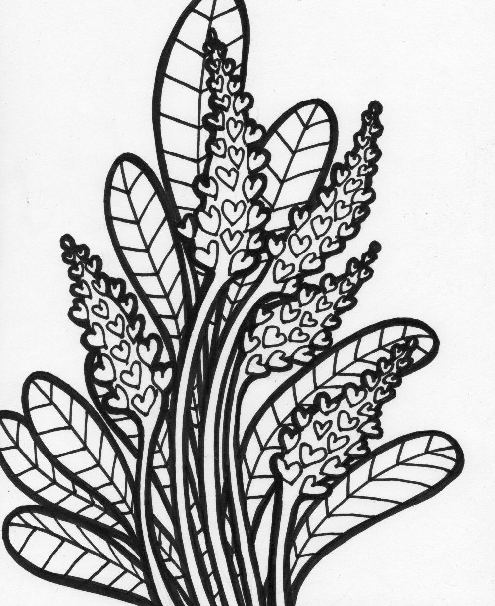 1000x1224 tropical rainforest plants coloring pages coloring page for kids