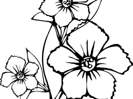 440x330 Drawing Tropical Flower Gardens, Tropical Plant Drawings