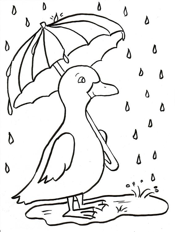567x753 Rainy Day Duckling Coloring Page